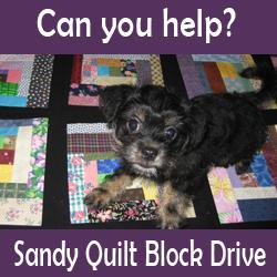 sandy-quilt-block-drive